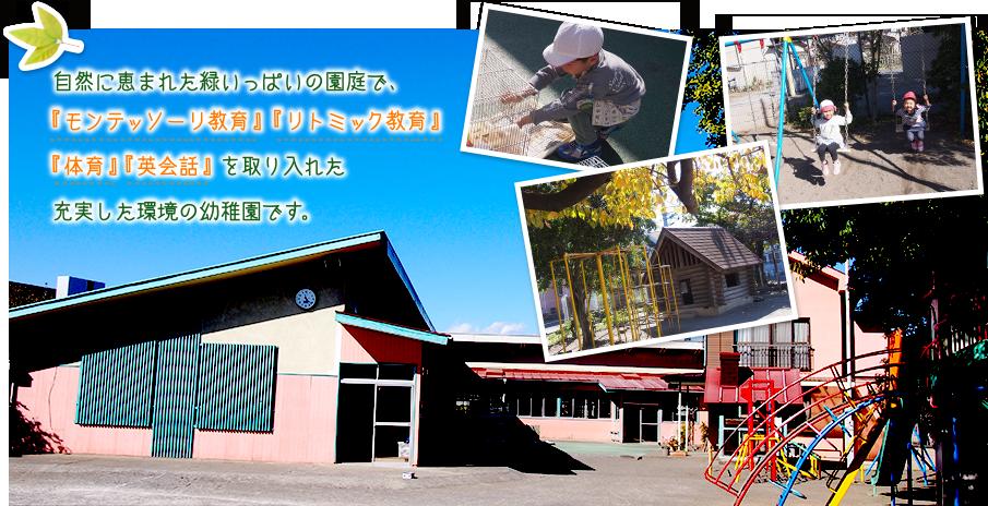 モンテッソーリ教育・幼稚リトミック教育幼稚園は東京国立市・国立文化幼稚園トップ画像