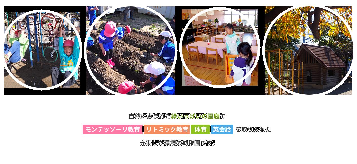 モンテッソーリ教育・リトミック教育の幼稚園・東京国立市|国立文化幼稚園トップ画像